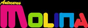 autocares-de-molina-logo